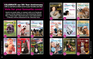 5 Year Anniversary Cover Contest