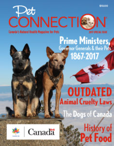 2017 Special Issue