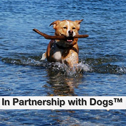 in-partnership-dogs-ad