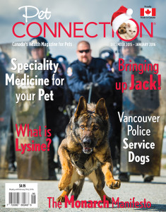 POLICE DOG COVER OF PET CONNECTION MAGAZINE