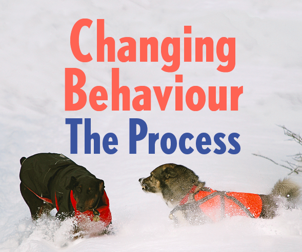 changing-the-behaviour-process