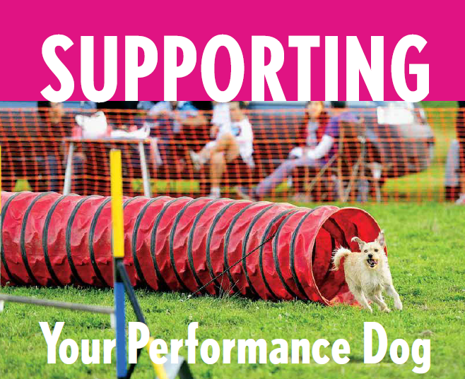 Supporting Your Performance Dog