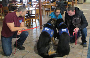 Citadel-Therapy-Canine-19-Jan-2013-009